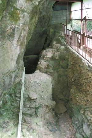上黒岩岩陰遺跡