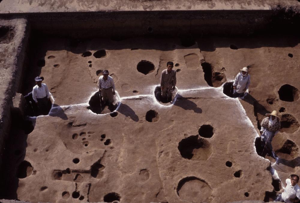 文京遺跡7次調査大型掘立柱建物