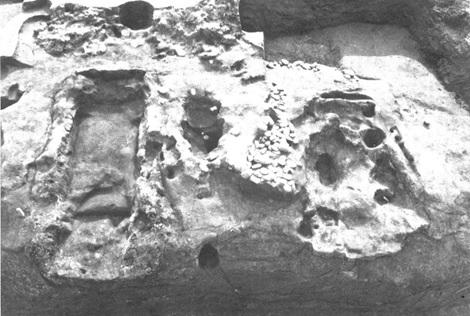 主体部の2つのお墓