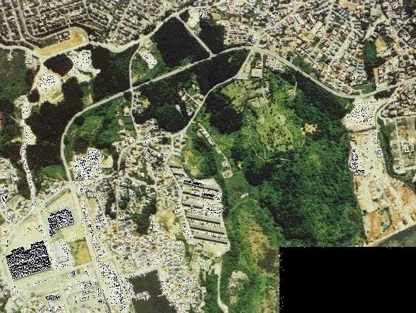上空から見た大木田貝塚
