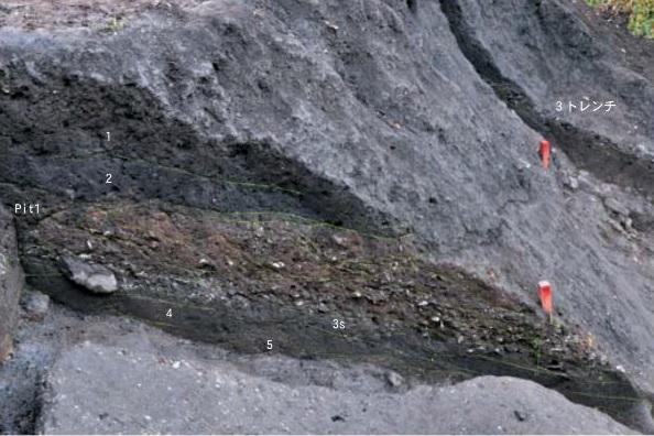 厚くつもった貝層のようす