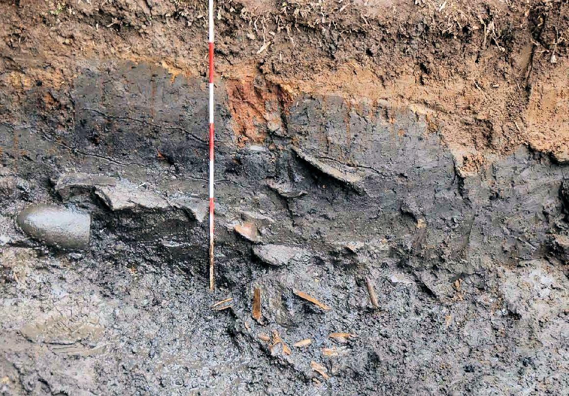 捨て場で発見された動物などの骨(縄文時代後期)