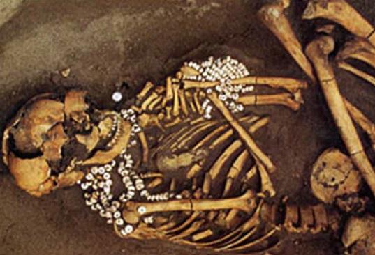 人骨と貝製平玉の副葬品がみつかった墓