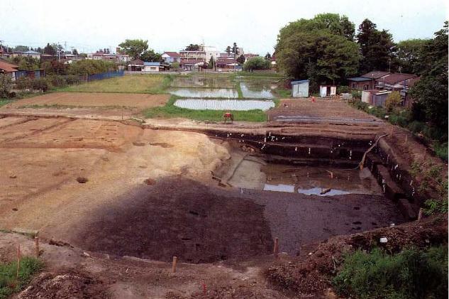 右手の黒い土が積もった所は河川の跡