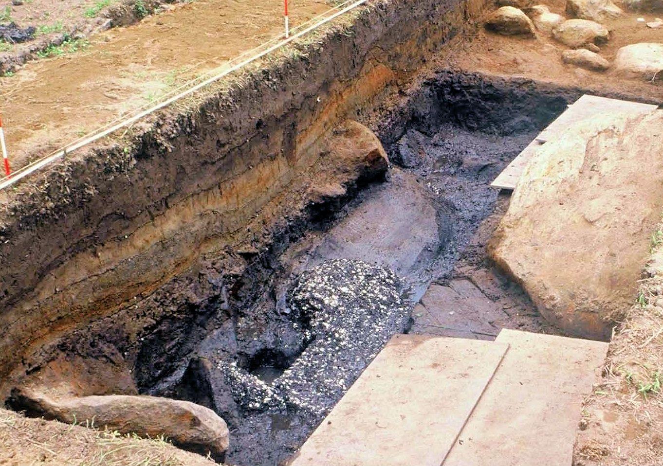 縄文時代前期の貝塚のようす