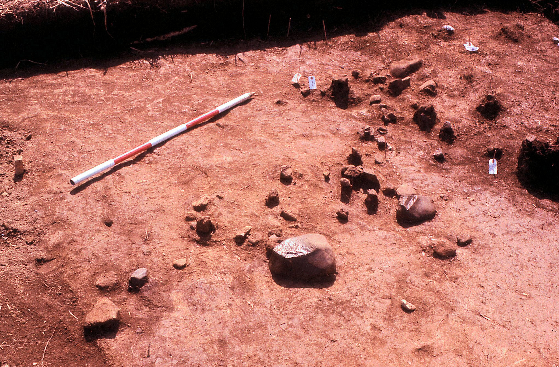 礫群の検出状況