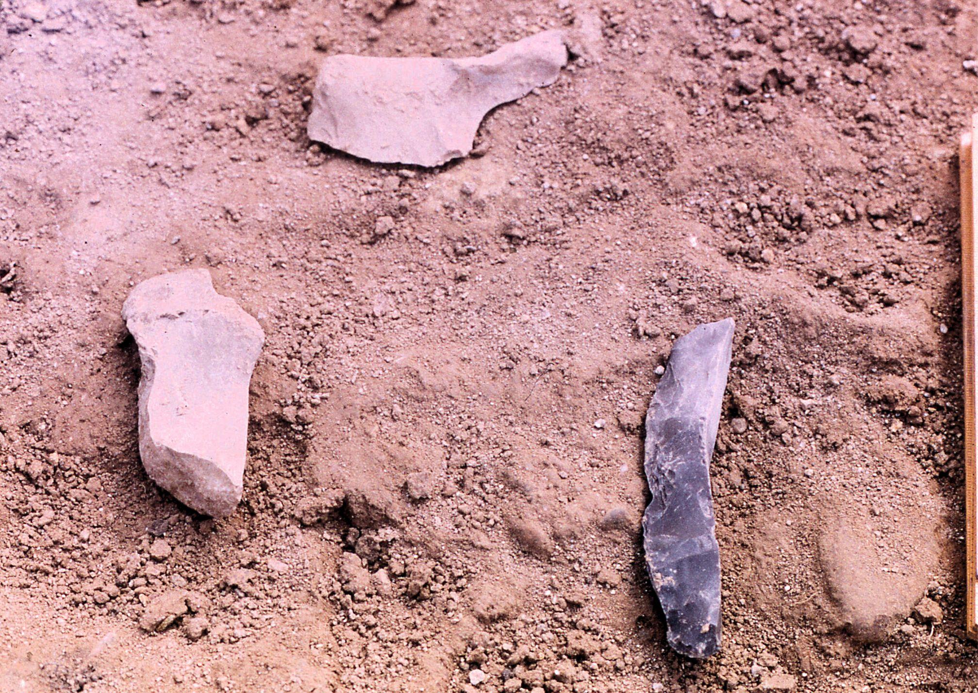 石器が出土した時のようす