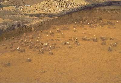 旧石器時代の石器出土状況