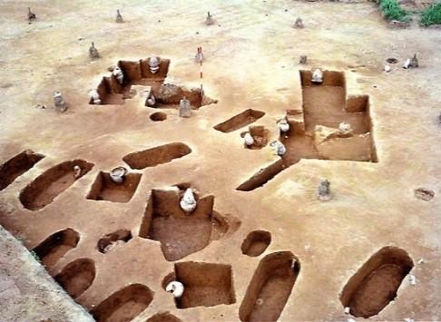お墓が集中して見つかった場所