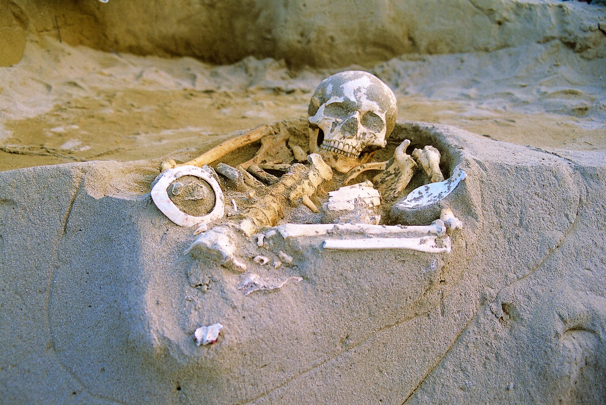 北区1号墓 検出状況(2005年度調査)