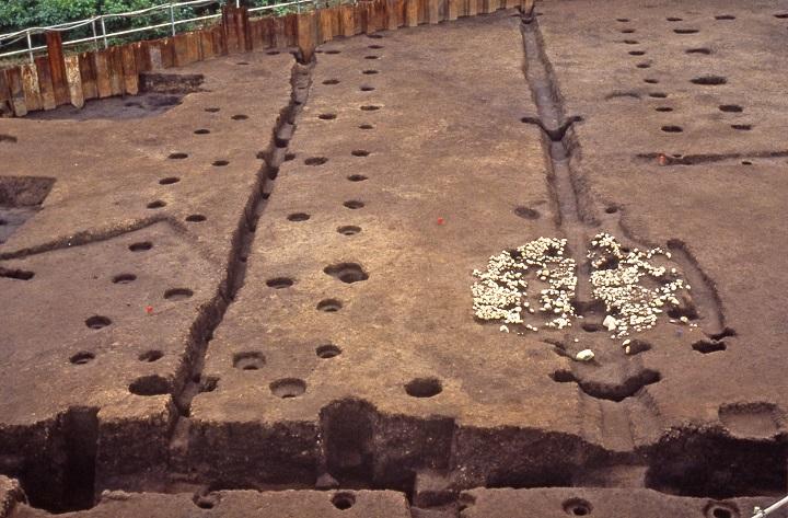 遺跡中央の柵列と石敷き遺構