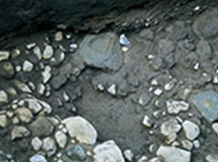 大型石皿のある水場