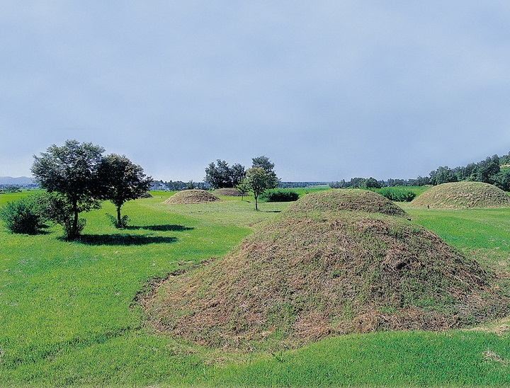 古墳群の近景