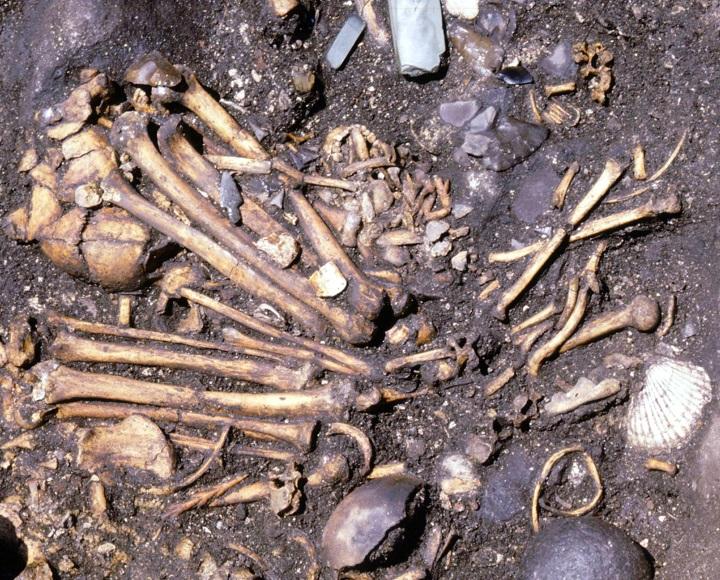 男女が合葬された墓(7号墳)