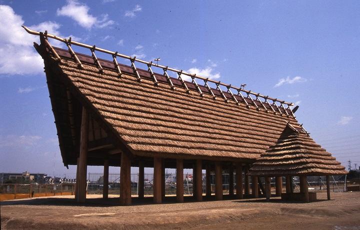 高床建物「いずみの高殿」を復元
