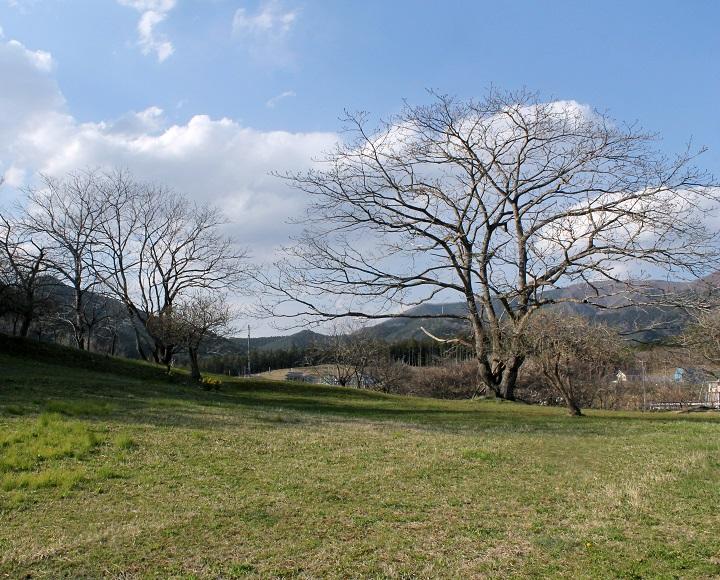 近景(住居区域と考えられる丘の頂の平坦部)