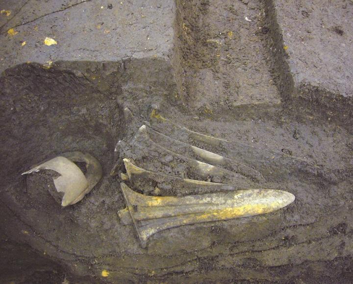 青銅器が埋まっていたようす