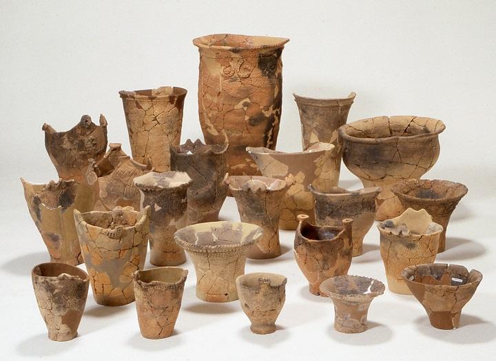 調査で見つかった縄文土器